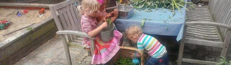 maminka-homeslider-bonen_oogsten